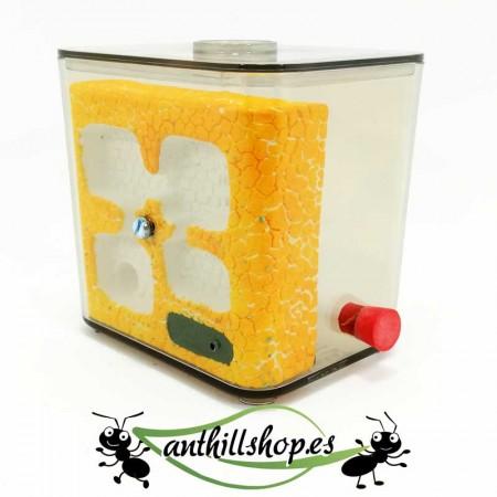 kit hormigueros de piedra L pequeño con sistema de humedad espuma