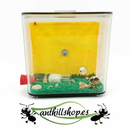 caja de forrajeo integrada con orificio para las galerías