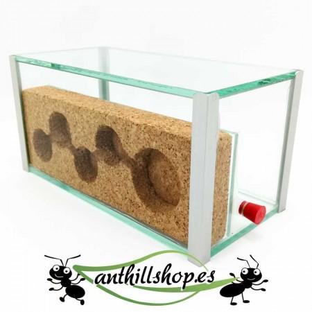 hormigueros de corcho