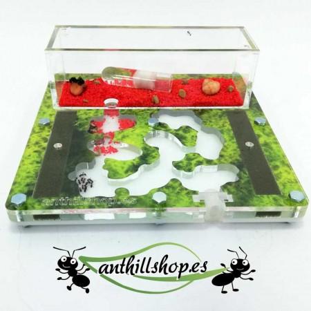 kit hormigueros de 15x15 espuma impreso