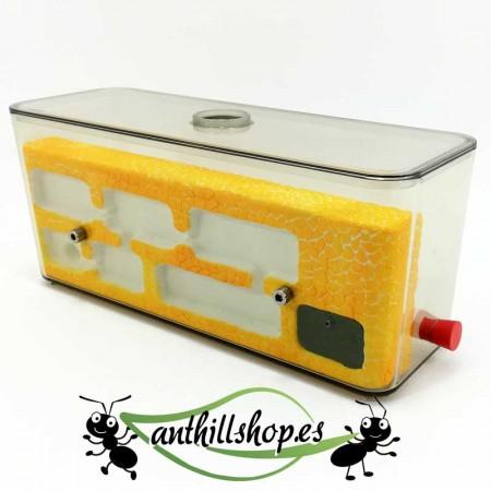 granja de hormigas piedra L mediano artesanal color amarillo
