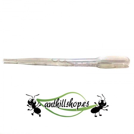 pipeta de plástico 3 ml para dar de comer a las hormigas