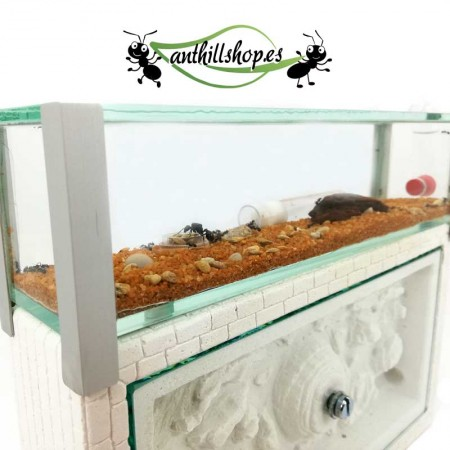 hormigueros con acabados artesanales de grandes calidades