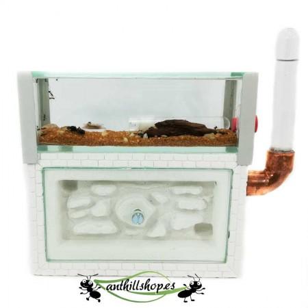 kit hormigueros cañón de piedra mediano con caja de forrajeo