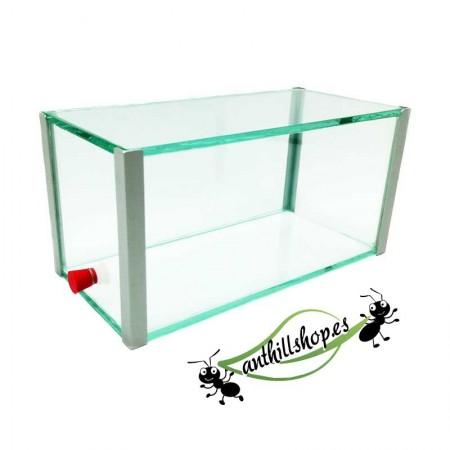 Caja de forrajeo de cristal para hormigueros
