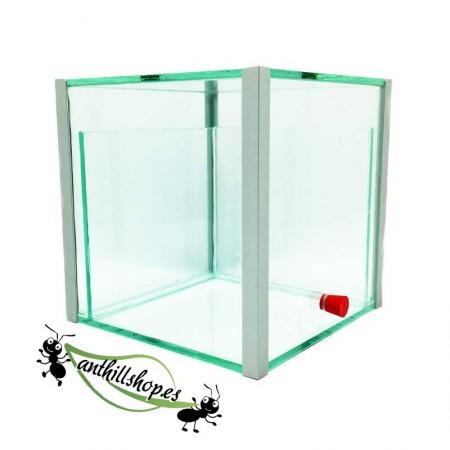 granjas de hormigas en forma de cubo con caja de forrajeo integrada central