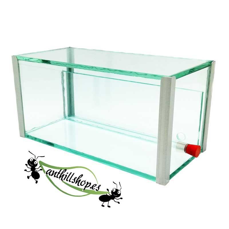 hormigueros cristal 1 de arena para la crianza de hormigas