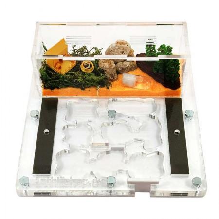 hormigueros acrilico con galerías natural