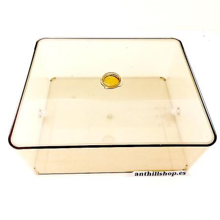 caja de forrajeo para todos los hormigueros