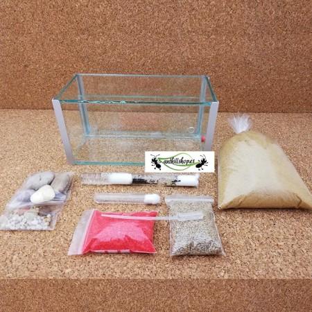 cristal 1 con accesorios y decoración